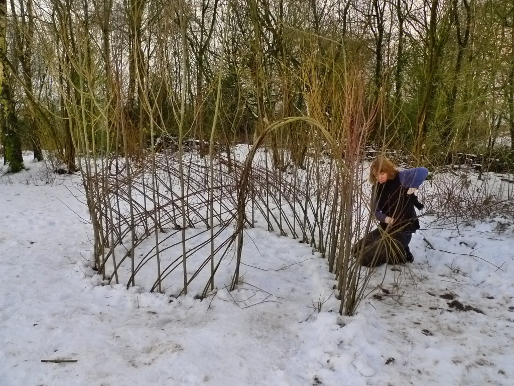 One day course on making willow dens